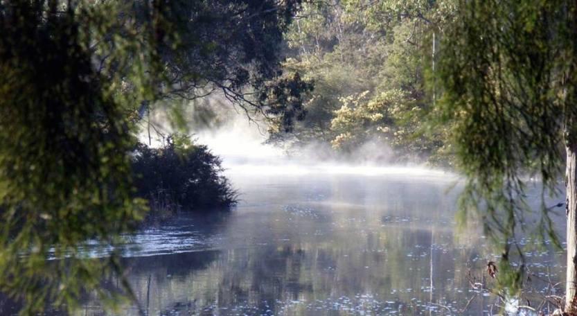 Photo source: Yarra Riverkeeper Association